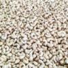 W450 Cashews Online