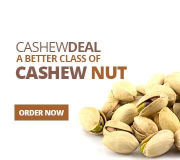 Cashew Nuts Exporters in Panruti