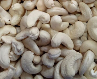 cashew nut wholesale price